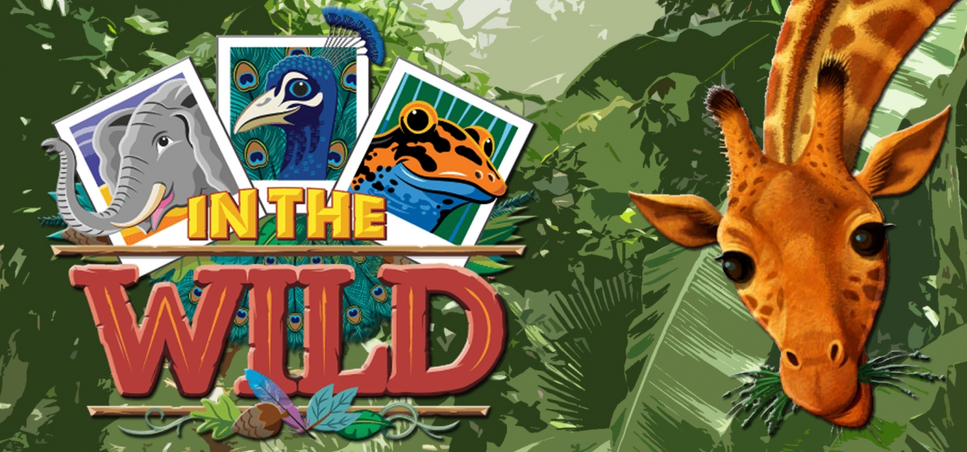 Image result for vbs in the wild 2019